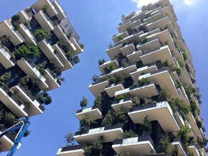 Un bosco verticale anche per treviso il capoluogo di marca imita