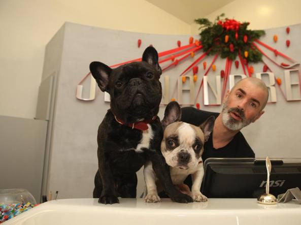 Gianni Cambia Vita E I Suoi Due Bulldog Francesi Volano Con Lui