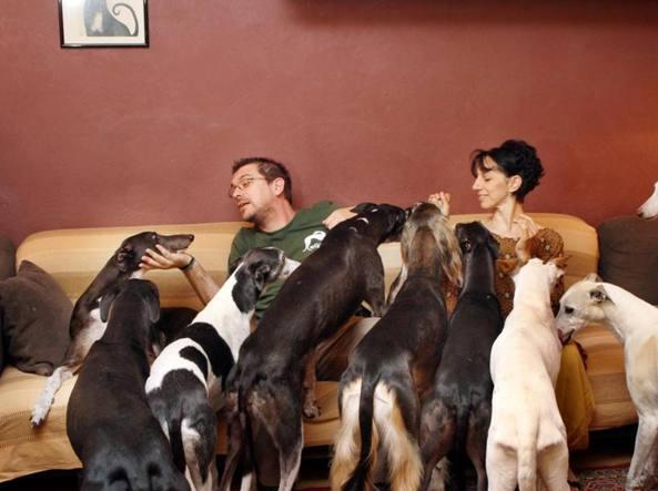 Risultati immagini per donna con molti cani