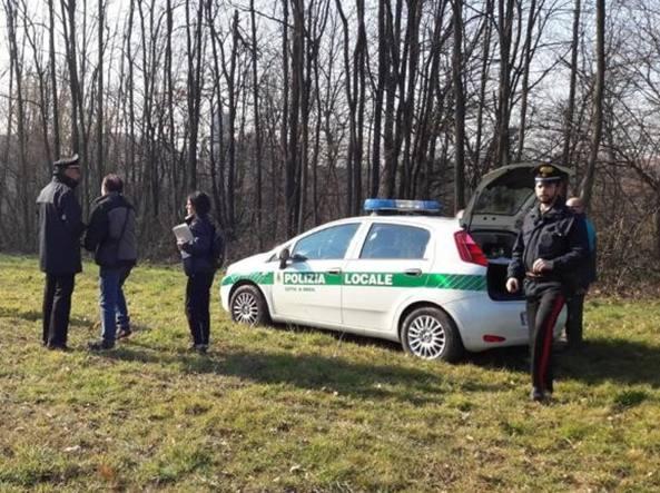 Meda, 62enne muore schiacciato dall\'albero che stava potando ...