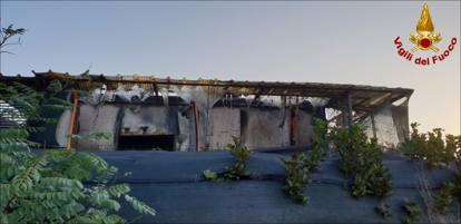 Rho, incendio nel gattile: morti quasi cento mici