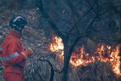 Varese, incendio sul monte Martica