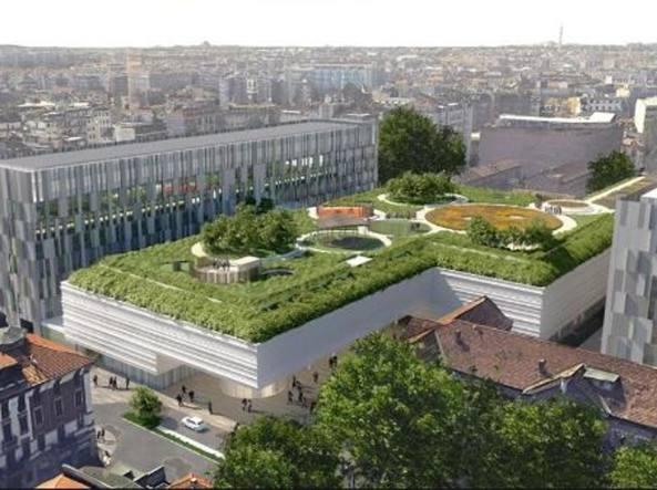 Giardini pensili e un tappeto verde sui tetti delle case for Giardino pensile