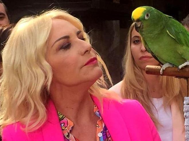 Milano, a intasare la Procura  arriva pure il pappagallo di «Portobello»