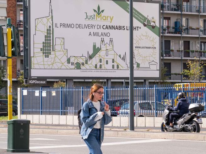 Cannabis light a casa: il nuovo businessE nel centro di Milanola canapa è gourmet