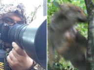 """Emanuele, il fotografo in mimetica degli animali: «Così sono riuscito a """"catturare"""" il lupo»"""