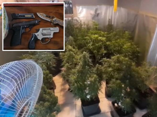 Pavia, dal piccolo spacciatore fermato con due pistole in centro alla   maxi fabbrica della droga